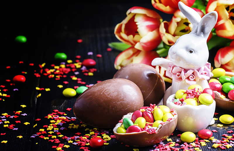 Easter bunny with chocolate (800w).jpg