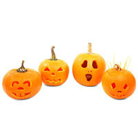 Halloween pumpkins resized image.jpg